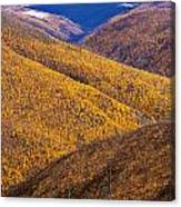 Fall Colours Along Top Of The World Canvas Print