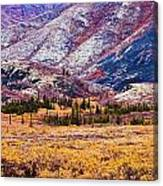 Fall Colours In Ogilvie Mountains Canvas Print