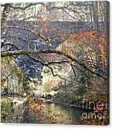 Fall Delight 3 Canvas Print