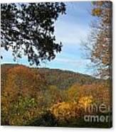 Fall Delight 9 Canvas Print