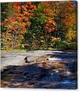 Fall Falls Canvas Print