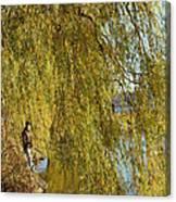 Fall Fisherman Canvas Print