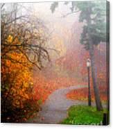 Fall Fog Canvas Print