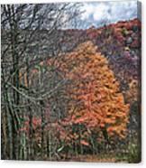 Fall Hiking Near Mountain Lake Canvas Print