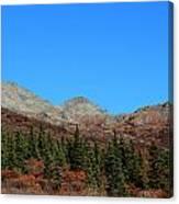 Fall In Denali Canvas Print