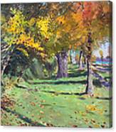 Fall In Goat Island Canvas Print