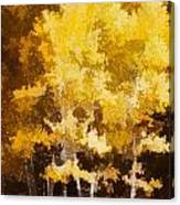 Fall In The Sierra II Canvas Print