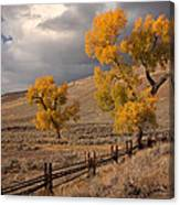 Fall In Yellowstone Canvas Print