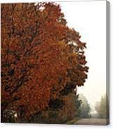 Fall Laneway Canvas Print