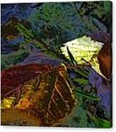 Fall Leaves Abstraction Canvas Print