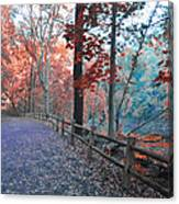 Fall On Forbidden Drive Canvas Print