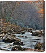 Fall On Savage River Canvas Print