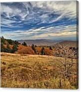 Fall On Whitetop Mountain Canvas Print