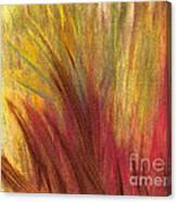 Fall Prairie Grass By Jrr Canvas Print