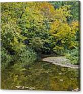 Fall Reflection Pool Canvas Print