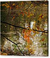 Fall River Branches Canvas Print