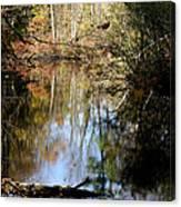 Fall River Undertones Canvas Print