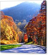 Fall Road 2 Canvas Print
