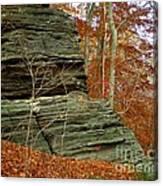 Fall Rock Canvas Print