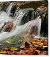 Fall Rush Canvas Print