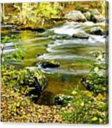 Fall Squared Canvas Print