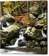 Fall Stream Canvas Print