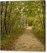 Fall Trail Scene 23 Canvas Print