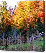 Fall Trees And Fence Canvas Print