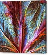 Fall Up Close Canvas Print