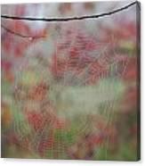 Fall Web Canvas Print