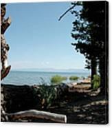 Fallen For Lake Tahoe Canvas Print