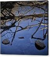 Fallen Tree Trunk With Reflections On The Muskegon Rive Canvas Print