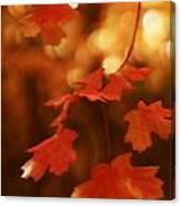 Falling Into Autumn Canvas Print