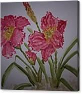 Falling Petal Canvas Print