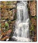 Falls At Bushkill Canvas Print