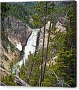 Falls In The Grand Canyon Of Yellowstone Canvas Print