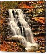 Falls In The Woods Canvas Print