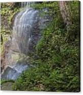 Falls Two  Canvas Print