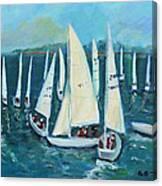 Falmouth Regatta Canvas Print