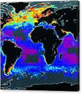 False-col Satellite Image Of World's Oceans Canvas Print