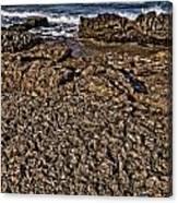 Famara Canvas Print