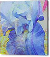 Fanciful Flowers - Iris Canvas Print