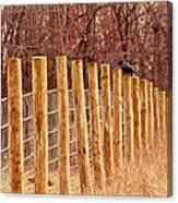 Farm Fence And Birds Canvas Print