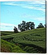 Farm Fields Canvas Print