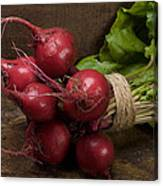 Farmer's Market Beets Canvas Print