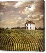 Farmhouse And Cornfield Canvas Print