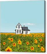 Farmhouse In A Field Of Sunflowers Canvas Print