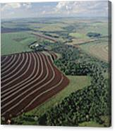 Farming Region With Forest Remnants Canvas Print