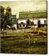 Farmland In Intercourse - Pennsylvania Canvas Print