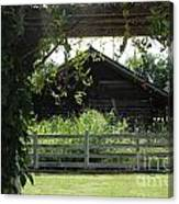 Farmyard Frame Canvas Print